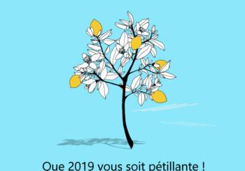 UN CITRONNIER POUR UNE TRÈS BELLE ANNÉE!
